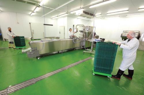 ECS-HERMETIC-4.8S-Cemento-Uretano-Industria-Alimentaria