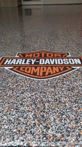ECS-HERMETIC-Flake-Harley-Davidson-1